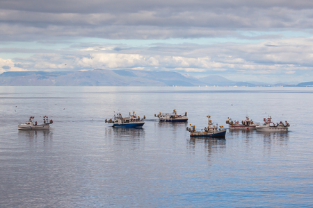 Iceland - August 13, 2017 : Commercial fishing boats at mackerel fishing in Icelandic waters.