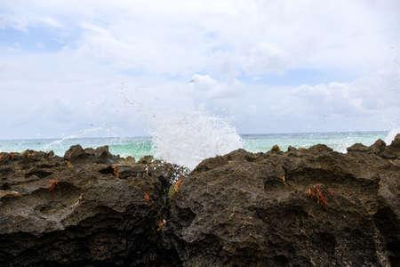 The beach in South America 版權商用圖片