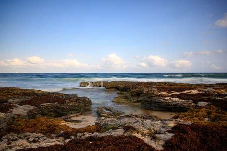 a lot of rocks at the beach in America 版權商用圖片