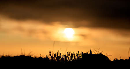 Black Beach sunset landscape in Iceland, Europe