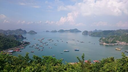 View of the bay of Cat Ba, a lot of boats in the sea, hills on the horizon