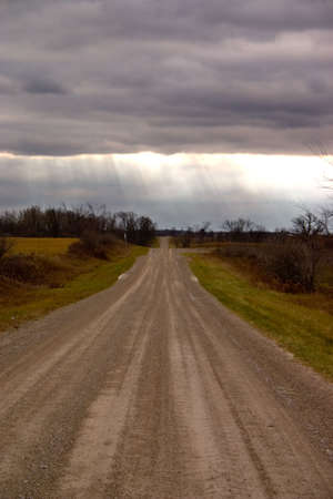 Sunrays in a field on a country road in canada. photo