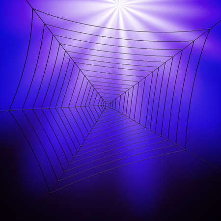 Spider web illustration and for abstract designs