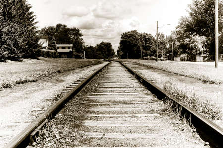 Railroad tracks passing into the bush near the clouds
