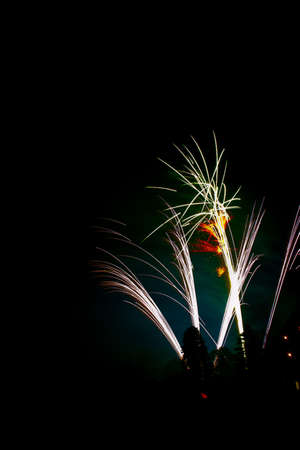 Colorful fireworks display at night for celebrating