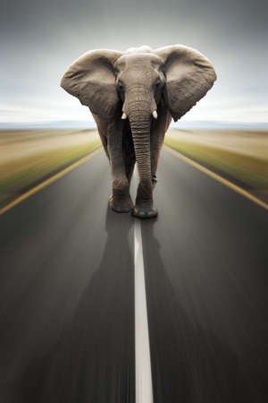 africana: Conceptual - Heavy duty transport  travel by road (Digital composite) Stock Photo