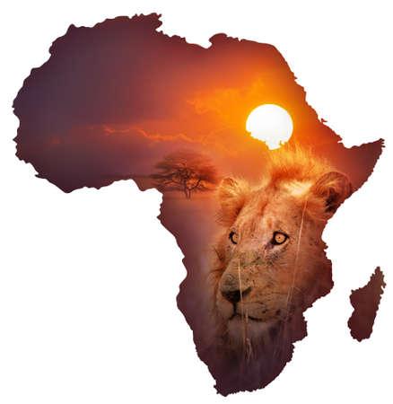africa sunset: Africa Wildlife Map Design - isolato su bianco