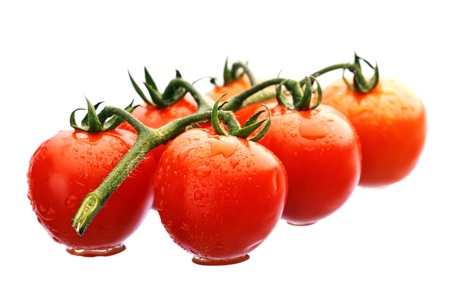 Wet Cherry Tomatoes on the vine isolated Stock Photo - 13626139