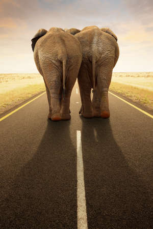 light duty: Conceptual - Going away together   travel by road  Digital composite