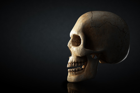Human skull still life with side view on dark background - 3D artwork Reklamní fotografie