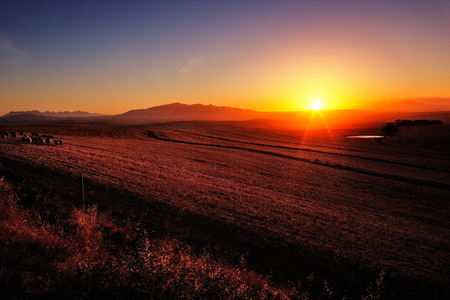 Sunrise over cultivated farmland (Cape Province - South Africa) Reklamní fotografie