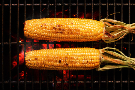 Whole Sweet Corn with leaves grilled on hot coal fire. Seen from above