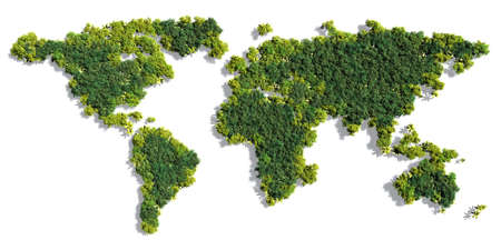 세계지도 그림자를 포함하여 단색 흰색 배경에 다양 한 상세한 나무로 이루어져 있습니다. 이 숲의 3D 일러스트는 전세계 녹색 환경 문제의 개념입니다
