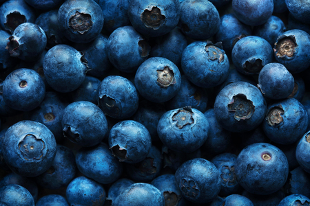 Blueberries background photographed from above full frame texture