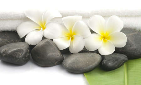 bali massage: Spa still life with zen stones,frangipani flower, white towel and green leave