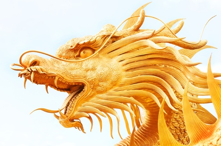 Golden dragon statue isolated on white background  photo