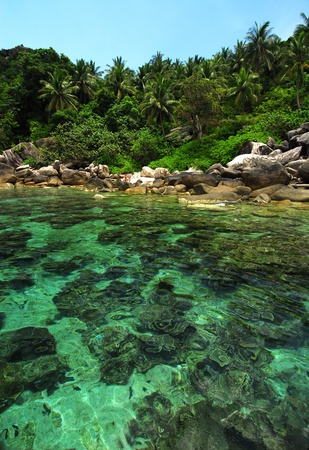 Tropical Island Paradise Koh Tao,Thailand  Stock Photo
