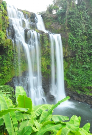 Beautiful Unesco Tad Yueang Waterfall in southern Laos  photo