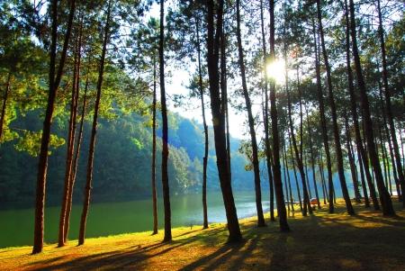 pang: Popular Lake in Mae hong son, Pang Ung, Thailand Stock Photo