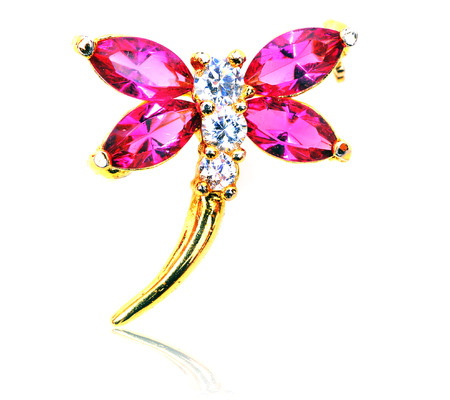 jeweled: Dragonfly jeweled brooch isolated on white