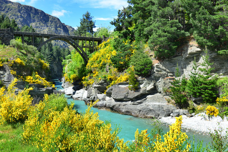 river view: The Bridge over the Shotover River in Queenstown, New Zealand
