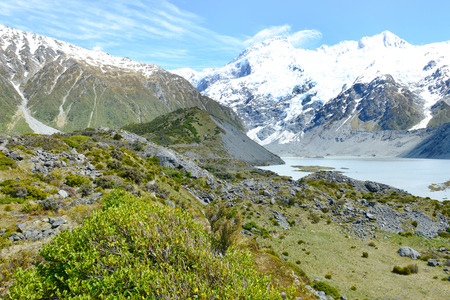 hooker: Trail through tussock in Hooker Valley, section of a track leading to Aoraki, Mount Cook, highest peak of Southern Alps, an icon of New Zealand partially covered in clouds
