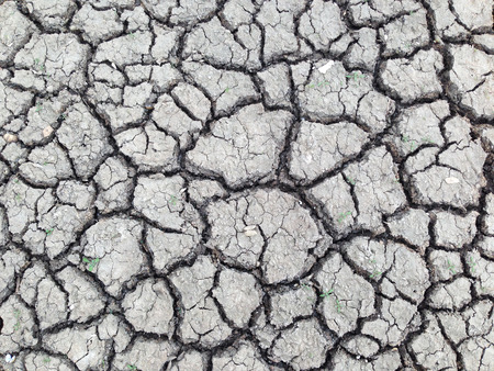 barrenness: Cracked and barren ground Stock Photo