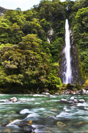 thunder: Thunder creek fall in tropical forest of New Zealand Stock Photo