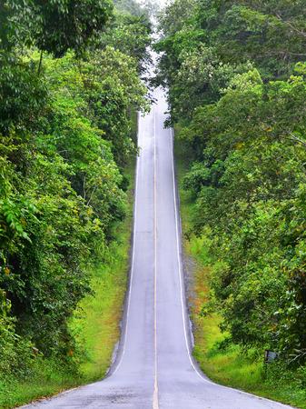 카오 야이 국립 공원, 태국의 아름다운 긴 언덕 도로