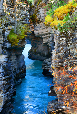Athabasca canyon in autumn, Jasper National Park, Alberta, Canada Stock Photo