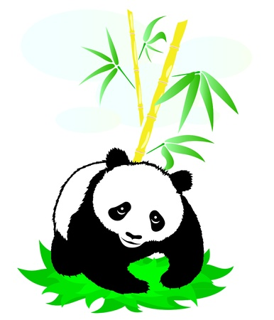 Panda on a background of bamboo Vector