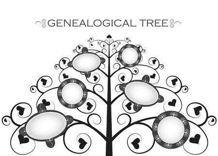genealogical: �rbol geneal�gico en un fondo blanco silueta, Vectores