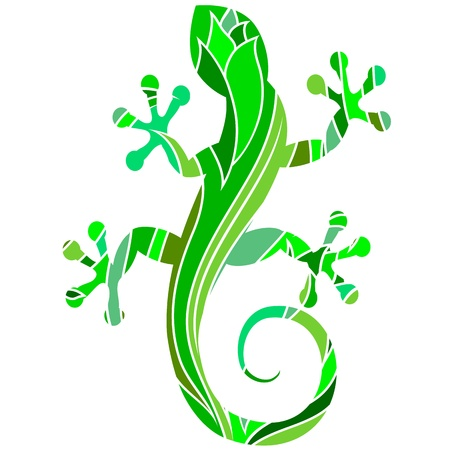 salamander: green salamander with a pattern for the vector