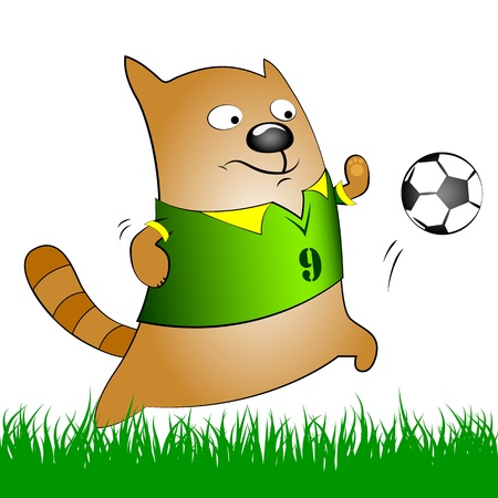 cat playing football, funny picture Stock Vector - 19910778