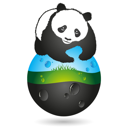 nature protection: Panda and a symbol of the earth, nature protection
