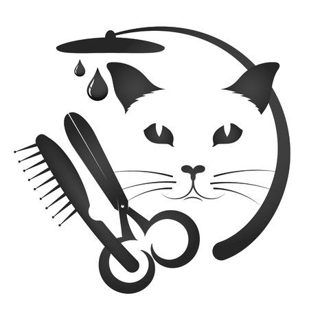 Pflege und Waschen von Katzen und anderen Tieren Standard-Bild - 91099463