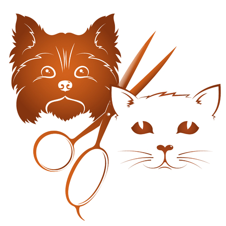 Grooming and cats Illustration