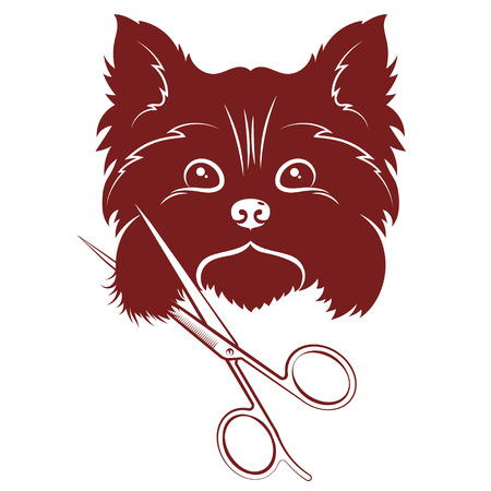 Cute dog snout and scissors for animal haircuts