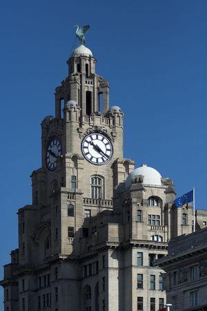 merseyside: Costruire il fegato Merseyside Liverpool Inghilterra  Archivio Fotografico
