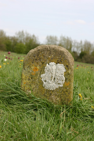 boundary: Old boundary marker in meadow Stock Photo