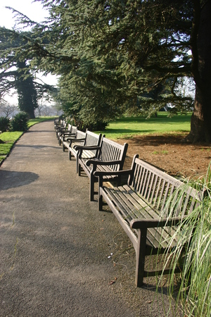 adjacent: Park with long row of benches Stock Photo