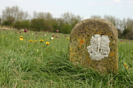 boundary: Old meadow boundary marker