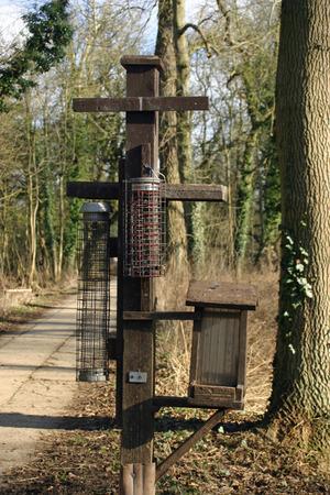 feeders: Bird feeders on wooden post
