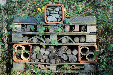 A bug hotel for insects and other invertebrates made from wooden pallets with pipes, roofing tiles, logs, stones and bits of wood surrounded by brambles. Reklamní fotografie
