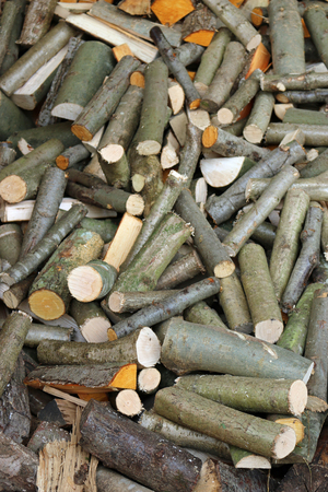 Split and round logs from a coppice woodland drying in a pile for firewood making an attractive collage. Stock fotó