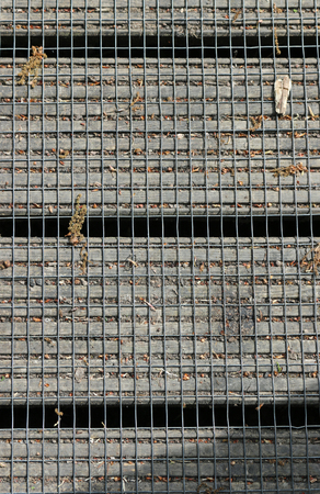 Close view of the metal wire mesh attached to the surface of a wooden decking boardwalk with plant debris and gaps between the boards. Standard-Bild