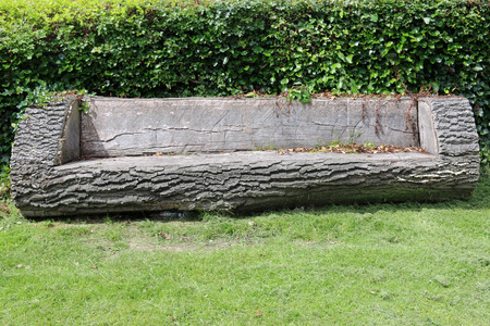 An unusual park seat made from a tree trunk with a grass lawn in front and a hedge in the background. Stock Photo