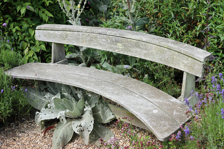 Traditional wooden curved park seat in a shady corner surrounded by plants. Stock Photo