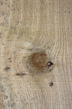 Oak, Quercus robur, tree recently sawn timber plank with knots and showing the grain that could be used as a background.