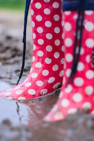 wellie: colored waterproof boots in a puddle closeup